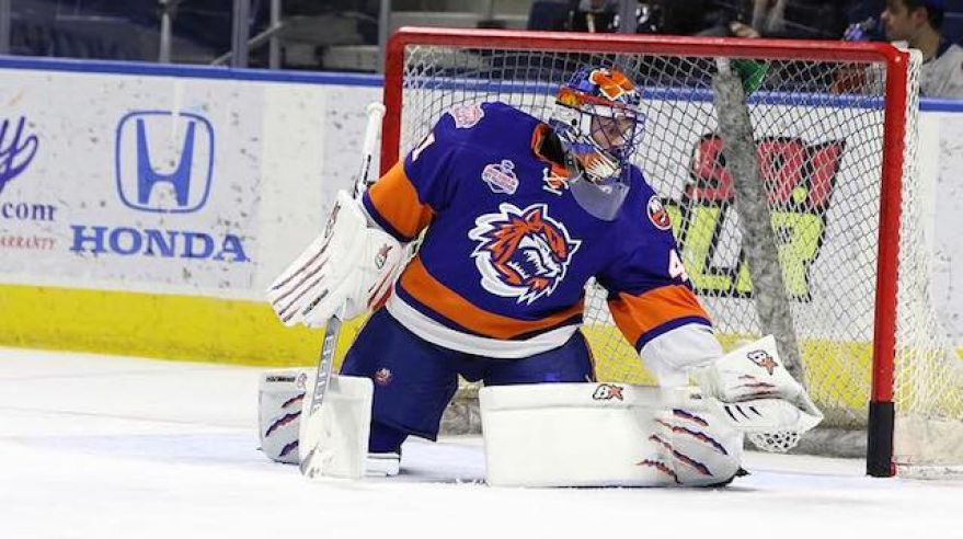 Jaroslav Halak, Bridgeport Sound Tigers, jan17, Facebook (Bridgeport Sound Tigers)