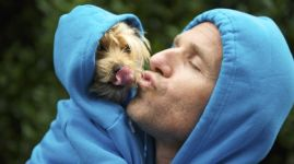 Man Kissing Best Friend Dog Matching Blue Hoodies at Park