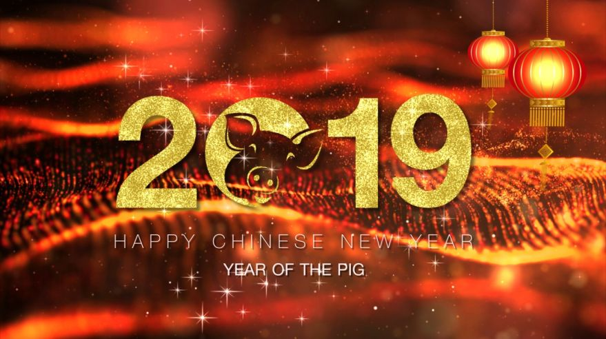 Chinese New Year background decoration background decoration 2019 Year of the Pig