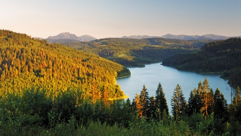 Lake and forest - Nova Bystrica dam