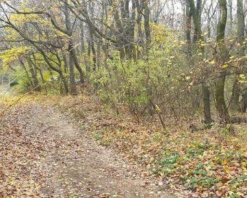 Na predaj 14a pozemok v susedstve s lesom Nitra – Zobor