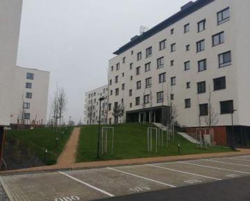 Prenajmeme 2 izb. byt v novostavbe Bory
