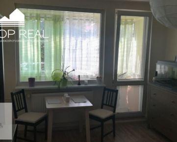 Zariadený 1 izbový byt s loggiou v príjemnom prostredí