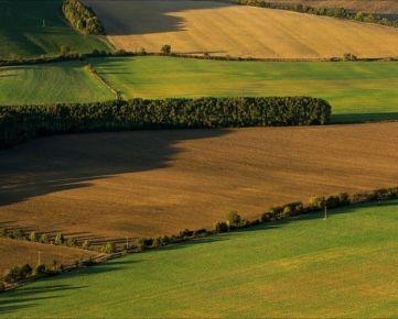 Kúpim ornú pôdu v Nitrianskom kraji