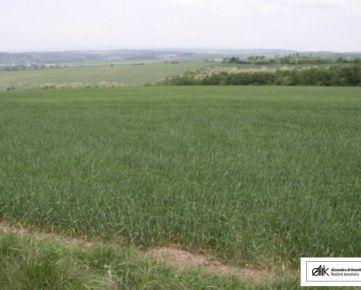 AARK: Orná pôda v katastri obce Vištuk s výmerou 65.621 m2