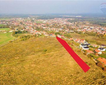PREDAJ – pozemok - vinica o celkovej výmere 10.000 m2, Lozorno