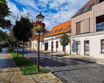 SLOVAK INVEST - Jedinečná nehnuteľnosť pre vaše podnikanie v historickom centre Trnavy
