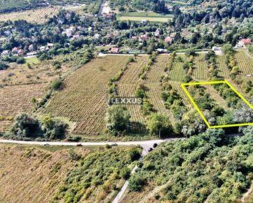 LEXXUS-PREDAJ pozemok - vinice vo Vinohradoch BA Nové Mesto