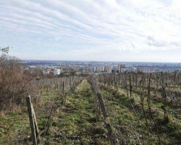 Investičný pozemok- vinice Bratislava-Rača, Slovensko