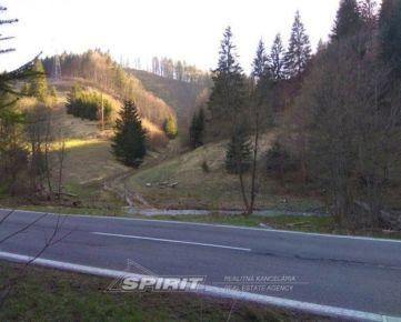 Pozemok s bohatým lesným porastom - Donovaly