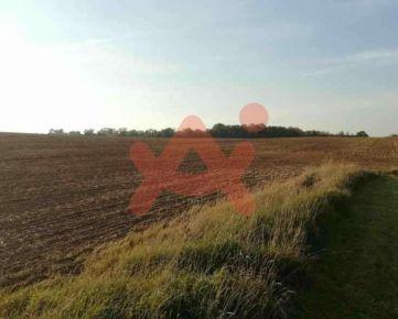 Predám slnečný pozemok v lokalite Nitra (ID: 101506)