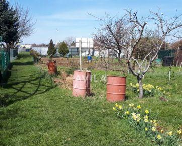 NA PREDAJ: záhrada s pivnicou Trnava,Nerudova ul.