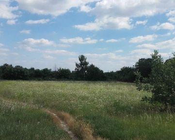 Predaj staveb. pozemku  8.243 m2 v Podunajských Biskupiciach na ul. Svornosti
