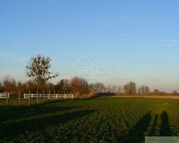 Stavebný a hospodársky pozemok v krásnom prírodnom prostredí pri Veľkom Mederi a Okoči
