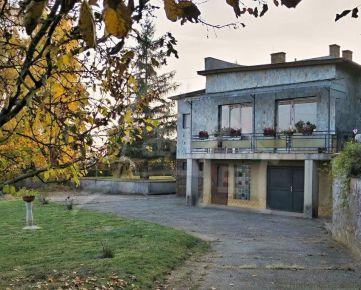 Honosné rodinné sídlo s vinicou pri obci Drienovec