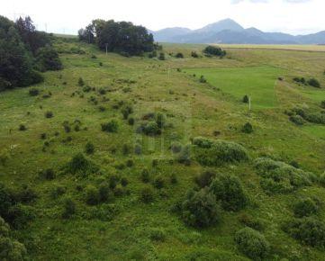 Direct Real - Rozľahlý stavebný pozemok pre milovníkov prírody a ticha.