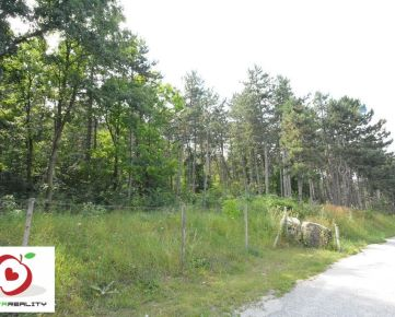 TRNAVA REALITY ponúka na predaj lesný pozemok o výmere 17 540 m2 k. ú. Horné Orešany.