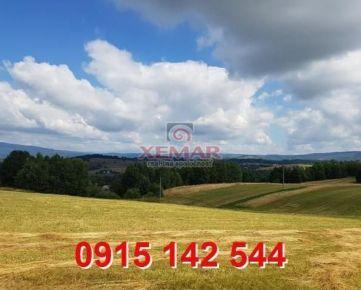 Na predaj pozemok v krajovej časti obce Detvianska Huta-znížená cena!!!