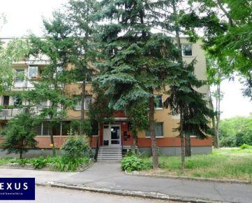 Predaj, 3-izbový byt s balkónom, 67 m2, 0./3, PRÍJEMNÉ PROSTREDIE, KOMPLETNÁ OBČIANSKA VYBAVENOSŤ V BLÍZKOM OKOLÍ