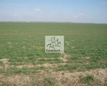 Orná pôda v Rusovciach.