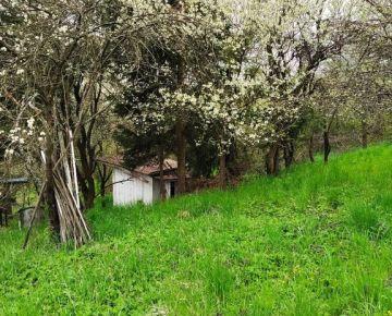 NA PREDAJ záhradný pozemok s chatkou, Košice Vyšné Opátske