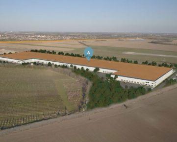 Prenájom výrobných alebo skladových hál Bratislava Airport / Warehouse or production hall-Bratislava