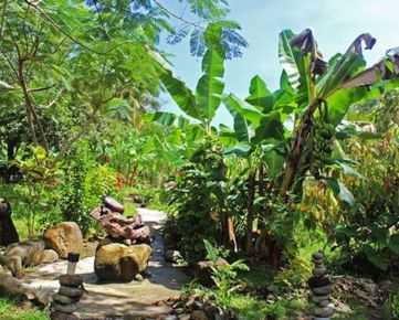 MUSEUM of RUM & grounds for sale  Historical site on Atlantic coast  Island Dominica, Lesser Antiles, West Indies, Caribbean