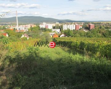 Na predaj záhrada-vinica so stavebným povolením.
