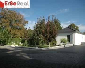(DS319) Veľké Dvorníky predaj dvoch domov