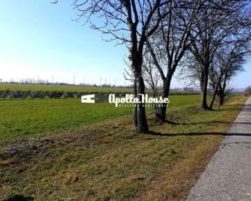 Pozemok- obec Jarovce, 10 000 m2