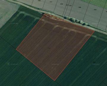 Predaj ornej pôdy, katastrálne územie Boleráz, 10 241m2