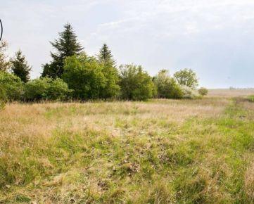 Veľký stavebný pozemok Senec, obec Reca
