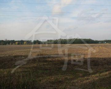 Rovinatý pozemok pri Lozorne na predaj