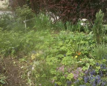 TIMA Real - Predaj záhrada, Modranka