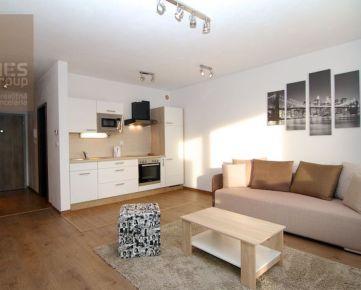 PRENÁJOM, 1 izbový zariadený byt s balkónom a parkovaním, Stupava