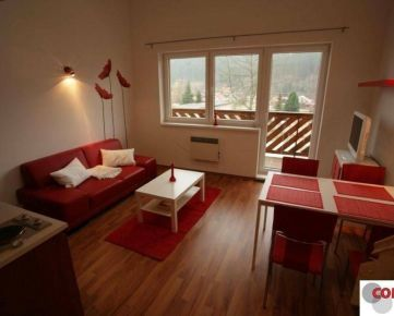 Apartmán pri lyžiarskom stredisku Snowparadise  Veľká Rača