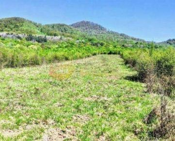 investičný pozemok 3095 m2 - Fintice