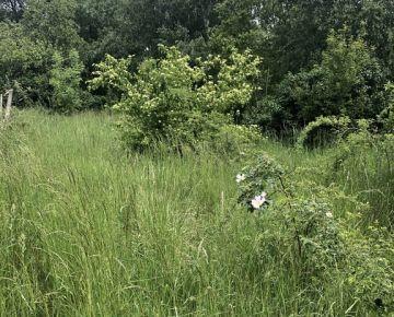 prenájom záhrady v Rači - Krasňany