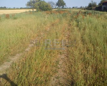 REI PREMIUM EXCLUSIVE -  pozemky v lokalite - BLATNÁ NA OSTROVE