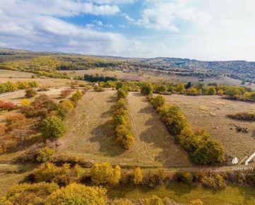 Na predaj pozemok v Krupine - časť Kopanice