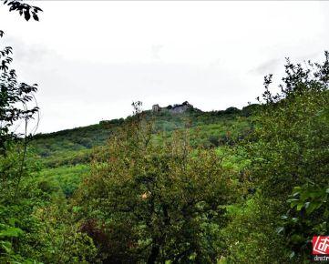 Direct Real - Slnečný pozemok s výhľadom na hrad Pajštún v samotnom srdci prírody, Borinka