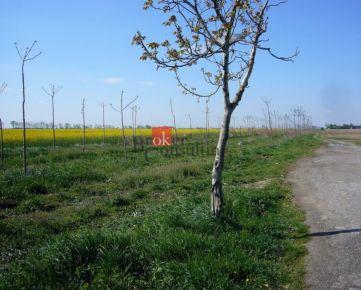 Orná pôda Jarovce na predaj, na hranici intravilánu, 1791 m2