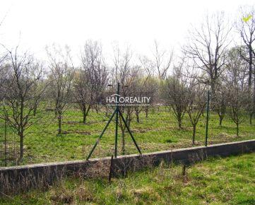 HALO REALITY - Predaj, pozemok pre rodinný dom 1000 m2 Jur nad Hronom