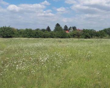 Predaj staveb. pozemku 8.243 m2 v Podunajských Biskupiciach