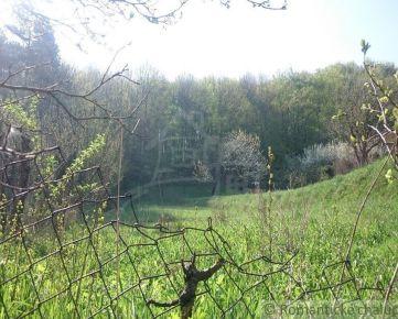 Pozemok pri lese na okraji obce Buková na predaj