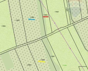 Ponúkam na predaj pozemok s trvalým trávnym porastom v Borskom Svätom Jure -časť Tomky