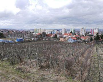 Winners reality ponúka na predaj vinice Bratislava – Rača – Pri kolíske, (za kúpaliskom)