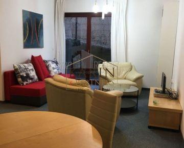 Prenájom - komfortný veľký byt v Horskom parku