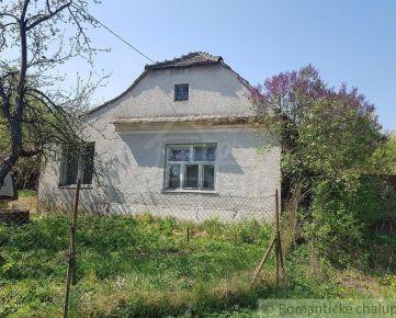 Staršia chalupa s veľkým pozemkom v obci Trstín na predaj