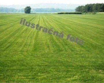 RE0602170 Pozemok / Orná pôda (Predaj)